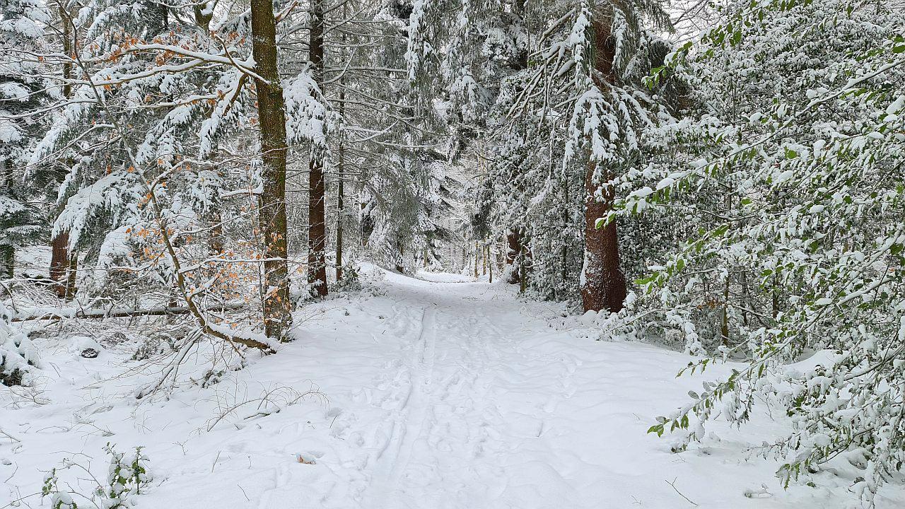 Spiritual Hiking 27.01.2021