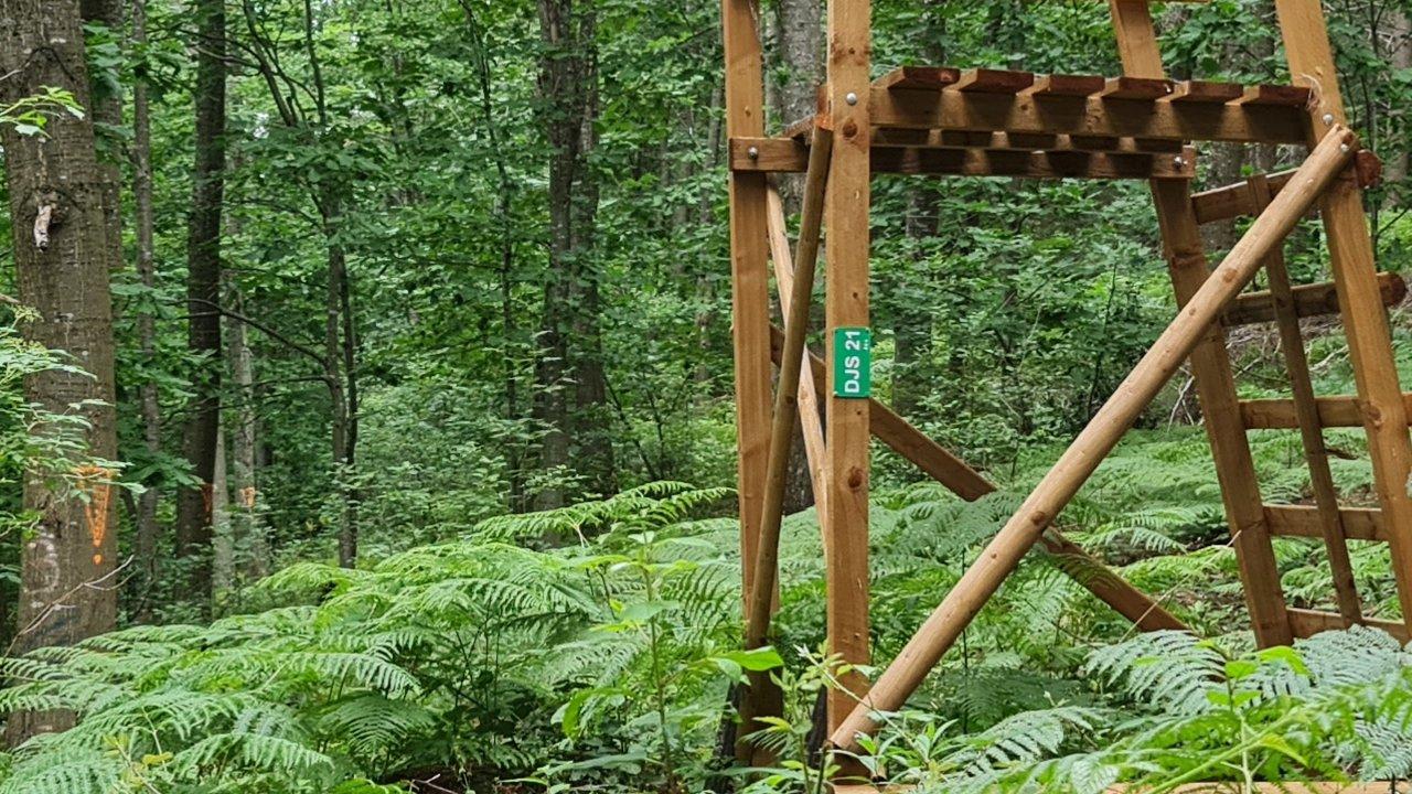 Spiritual Hiking 27.07.2021