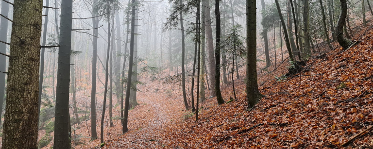 Spiritual Hiking
